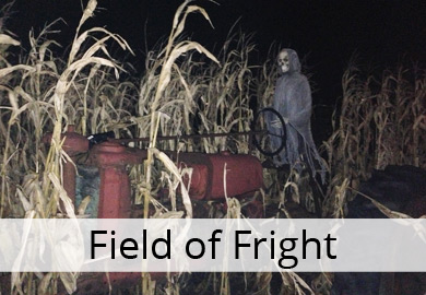 field of fright